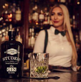 Der perfekte Gin Tonic