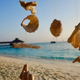 Reethi Beach – Insel mit Vorbildcharakter